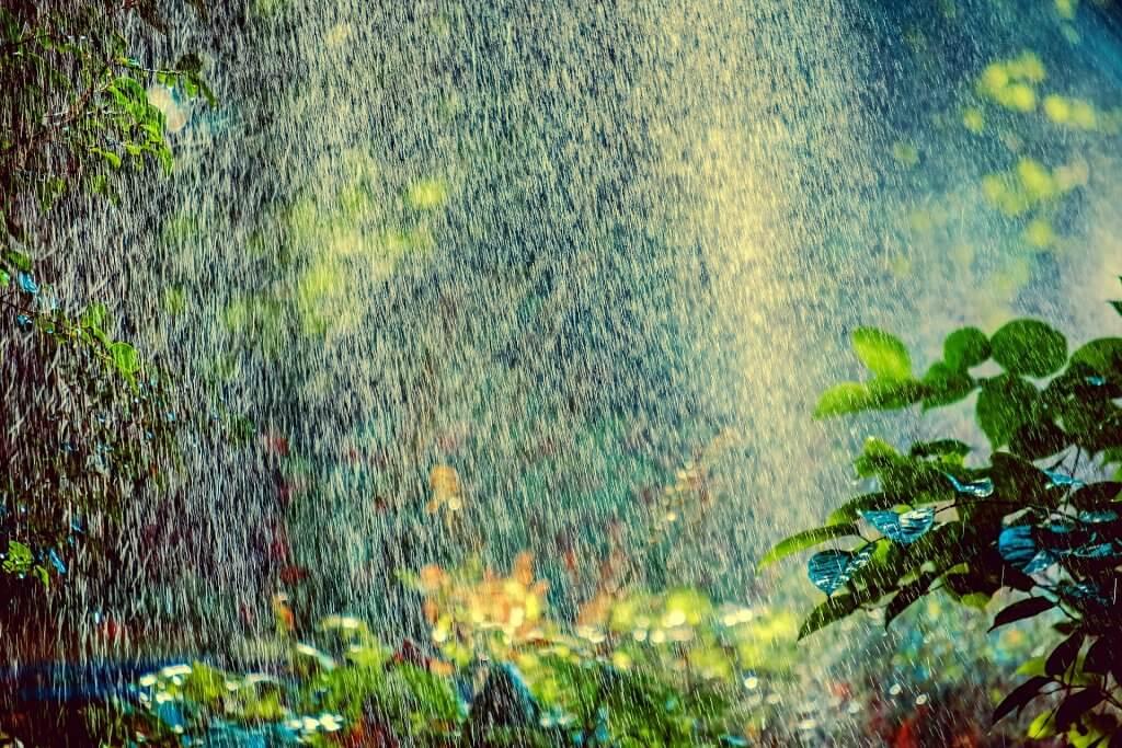 Grey Water Irrigation System